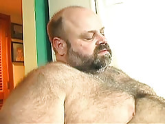 Bear placid gay enjoys cock sucking sex